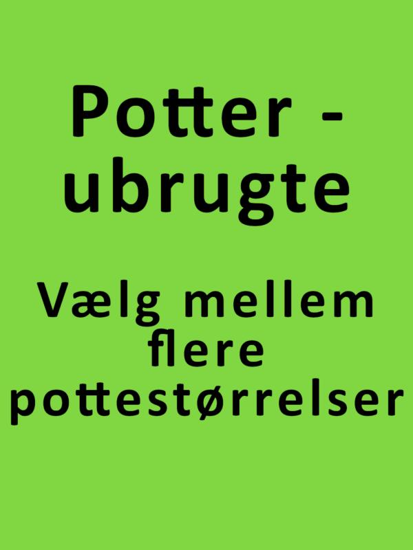 planteskolepotter - ubrugte